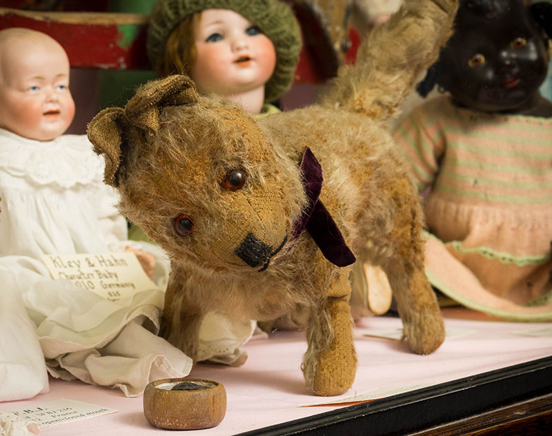 Rags the Dog: The Lilliput Doy and Toy Museum
